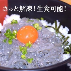 和歌山県 新宮市 生しらす (100g×4パック) 3chokud 03