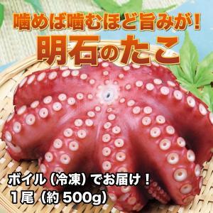 兵庫県 明石市 明石たこ ボイル 1尾(約500g)冷凍|3chokud