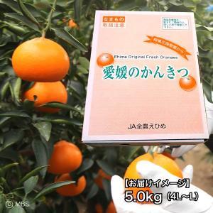 愛媛県 せとか 5kg(4L〜L)|3chokud|03