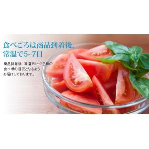 高知県 高糖度フルーツトマト シュガートマトビアンコ糖度8(1kg) 20玉入 約50g/玉|3chokud|04