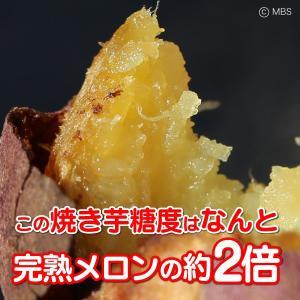 大分県 さつまいも 甘太くん 5kg(M) 20〜33本入|3chokud|02