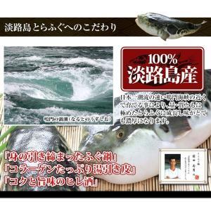 淡路島 とらふぐ鍋3〜4人前 てっぴ・ひれ付 ...の詳細画像1