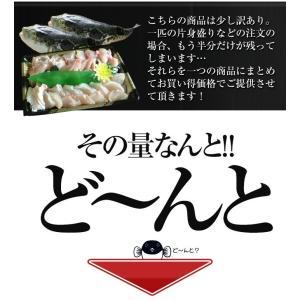 淡路島 とらふぐ鍋3〜4人前 てっぴ・ひれ付 ...の詳細画像2