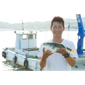 絶品 淡路島産 とらふぐ 唐揚げ 約200g 若男水産|3nen-torafugu|06