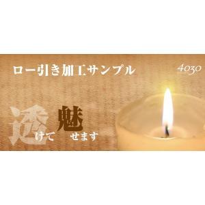 ロー引き加工サンプル帳 4030shiozawa