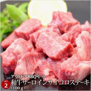バーベキュー 肉 牛豚肉合計3kgの超ボリューム!アウトドアBBQセット [肉の日][お歳暮][ご贈答][セルフ父の日] 4129 03