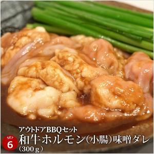 バーベキュー 肉 牛豚肉合計3kgの超ボリューム!アウトドアBBQセット [肉の日][お歳暮][ご贈答][セルフ父の日] 4129 07