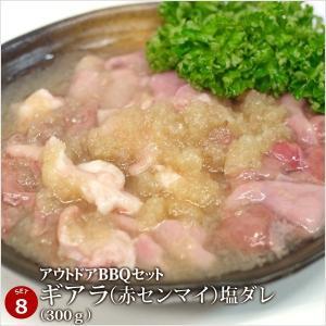 バーベキュー 肉 牛豚肉合計3kgの超ボリューム!アウトドアBBQセット [肉の日][お歳暮][ご贈答][セルフ父の日] 4129 09