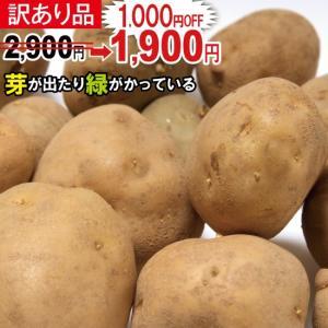 【送料無料】春じゃが【日本一】じゃがいも 長崎県島原産馬鈴薯...