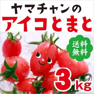【送料無料】アイコトマト3Kg【長崎県産】やまちゃんのアイコとまと|4132mall