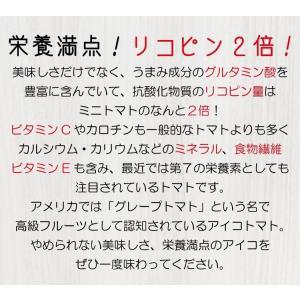 【送料無料】アイコトマト3Kg【長崎県産】やまちゃんのアイコとまと|4132mall|05