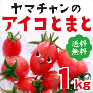 送料無料 アイコトマト 1Kg 長崎県産 やまちゃんのアイコ とまと