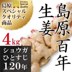 【8月下旬から9月上旬頃の発送】令和元年産 新生姜 新しょうが4Kg送料無料 長崎県産