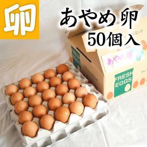 【送料無料】あやめ卵 50個 生卵 玉子焼き 卵かけごはん 新鮮 農場直送 贈り物 プレゼント お礼 スイーツ お見舞い オムライス お祝|4kijp
