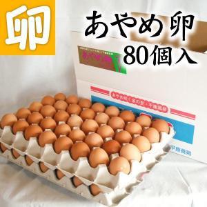 【送料無料】あやめ卵 80個 生卵 玉子焼き 卵かけごはん 新鮮 農場直送 贈り物 プレゼント お礼 スイーツ お見舞い オムライス お祝|4kijp