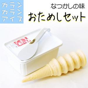送料無料 カランカラン アイス おためしセット (パックアイス&コーン&ヘラ)|4kijp