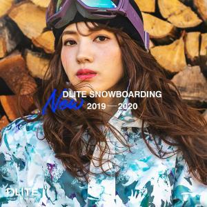 スノーボード ウェア レディース スキーウェア 上下 セット DLITE スノボウェア スノーボードウェア スノボ 型落ち|4ss