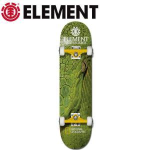 エレメント ELEMENT 2019  コンプリートデッキ  8インチ 板 スケートボード スケボー|54tide