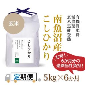 【定期便】玄米5kg×6回(6カ月コース)南魚沼産コシヒカリ|5602miwa