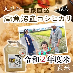 10kg(5kg×2袋)令和2年度 玄米 南魚沼産コシヒカリ 5602miwa