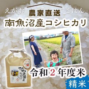 【30年度新米予約】10kg 精米 南魚沼産コシヒカリ※10月中旬順次発送|5602miwa