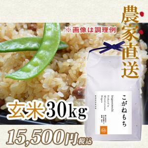 30kg 令和2年度  もち米玄米 南魚沼産こがねもち|5602miwa