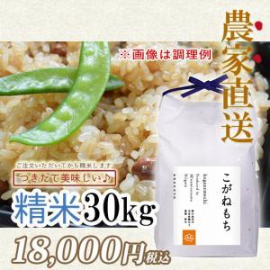 30kg 令和2年度  もち米精米 南魚沼産こがねもち|5602miwa