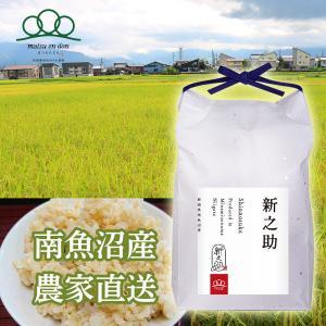 【令和3年度米】玄米5kg 南魚沼産新之助 大粒で綺麗なツヤがあり、豊潤な甘みとコク※10月中旬から順次発送|5602miwa