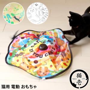 猫のおもちゃ キャッチミーイフユーキャン2 猫壱...