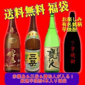 【送料無料】赤霧島・三岳入り厳選芋焼酎4本福袋|5chisousyouten