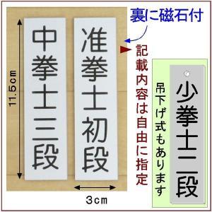 道場掲示『武階札DX』<銀色に黒文字>  (メール便なら→)【送料無料】|5endama