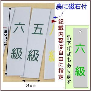 道場掲示『武階札DX』<銀色に緑文字>  (メール便なら→)【送料無料】|5endama