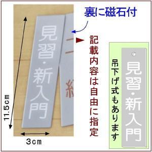 道場掲示『武階札DX』<銀色に白文字>  (メール便なら→)【送料無料】|5endama