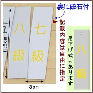 道場掲示『武階札DX』<銀色に黄文字>  (メール便なら→)【送料無料】|5endama