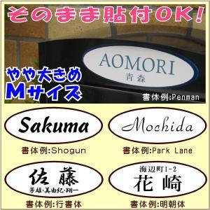 簡単!貼付表札・だ円(Mサイズ:6×16cm)・シンプル (メール便なら→)【送料無料】 5endama