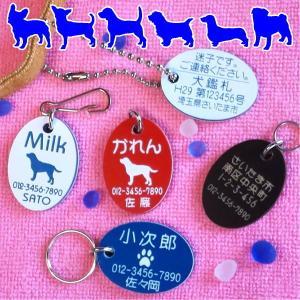 【両面刻印】迷子札・だ円・犬のイラスト入り (メール便なら→)【送料無料】|5endama