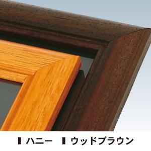 背板取り外し式額縁/A2サイズ  パネル  額縁  ポスターパネル  ポスターフレーム  ポスター入れ|6111185|02