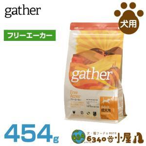 GATHER フリーエーカー 454gの商品画像 ナビ