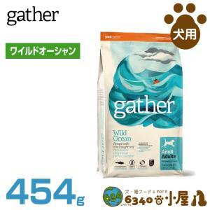 GATHER_ドッグ ワイルドオーシャン 454g 20303003 グローバルペットニュートリション (D) ドッグフード フードの商品画像|ナビ