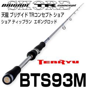 天龍 ブリゲイド TRコンセプト ショア BTS-93M 2ピース スピニング|6977