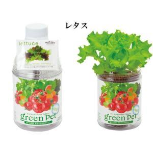 『栽培セット』 育てるグリーンペットベジ 【即...の詳細画像2