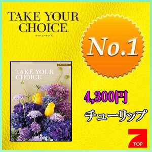 快気祝い 人気 カタログギフト TAKE YOUR CHOICE テイク ユア チョイス チューリップ 4300円コース|7top