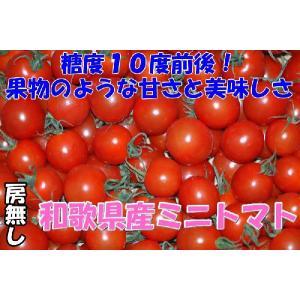 リピーター続出中の和歌山県産ミニトマトの房無し商品です  房付きと比べ、より完熟度が高くなっておりま...