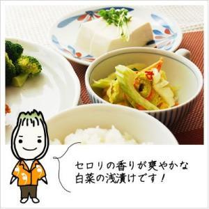 [白菜の浅漬け:セロリ入りの爽やかモダン]スーパー白菜セロリくん 140g|812hosoduke|03