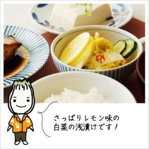[白菜の浅漬け:レモンですっきり味に仕上げた夏浅漬け]スーパー白菜れもんちゃん 140g 812hosoduke 03