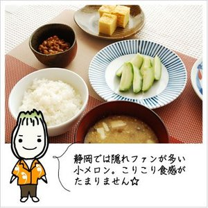 [小メロンの浅漬け:食べたことありますか?]メロン漬け 300g|812hosoduke|03