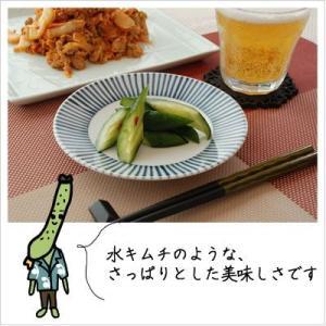 [きゅうりのキムチ:あっさりサラダ感覚]きゅうりキムチ 半切 200g|812hosoduke|03