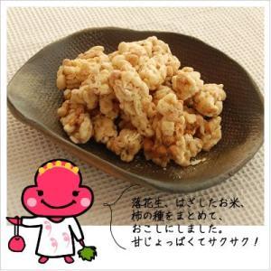 [お菓子:落花生と柿の種のおこし] らっかおこし 180g|812hosoduke|03