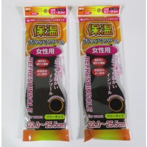 保温ブラックインソール(女性用)2枚入×2セット|82netshouten