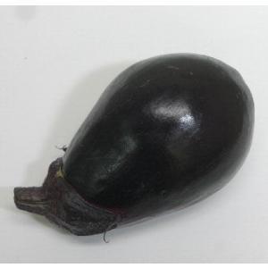 ナス 水なす(紫水) 1玉のセット おいしさと健康メイコウアグリ|8hana-gift